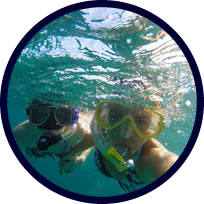 Snorkelling, swimming, cave trips at sea in Denia & Javea